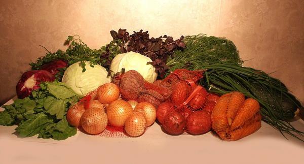 Районированные сорта картофеля, овощных культур, рекомендуемые для коллективного и приусадебного выращивания в кировской области