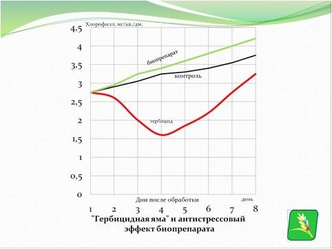 'гербицидная яма' и антистрессовый эффект биопрепарата