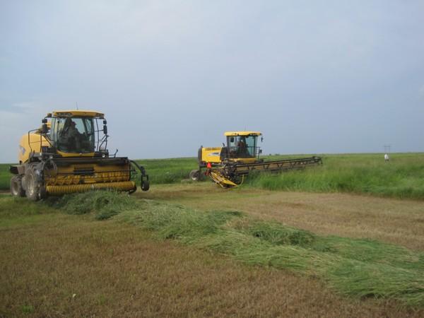 На заготовке кормов