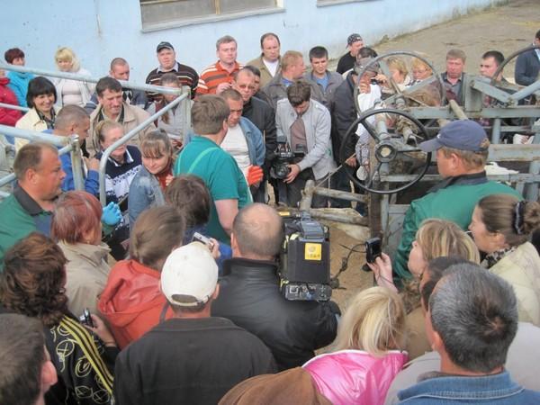 Немцы научили кировчан обрабатывать копыта