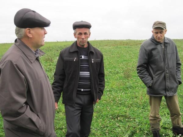 На полях немского района