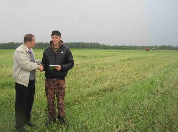 Подходы к заготовке кормов на севере области