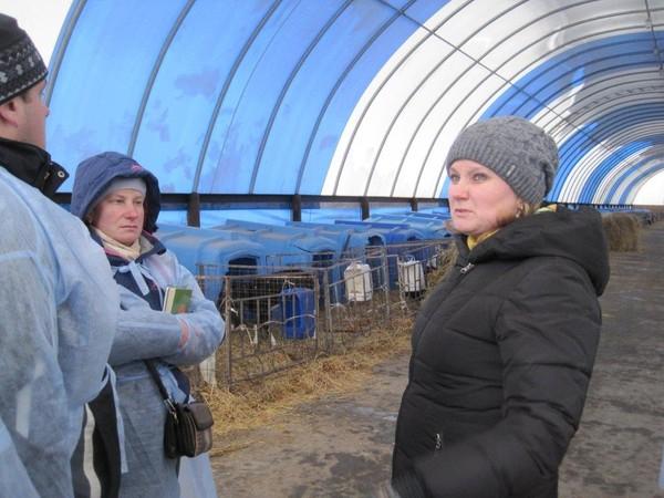11000 кг молока от коровы – не предел