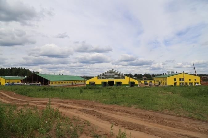 Особенности модернизации в агрофирме «Коршик»