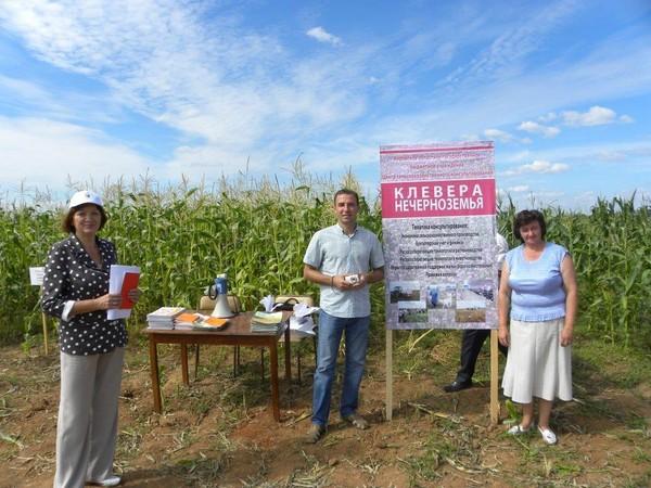 Разговор о кукурузе вызывает интерес