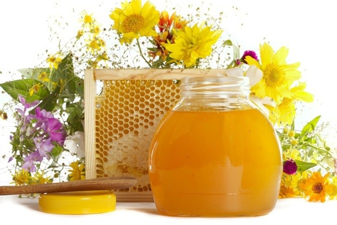 Кировские пчеловоды приглашаются в Уфу