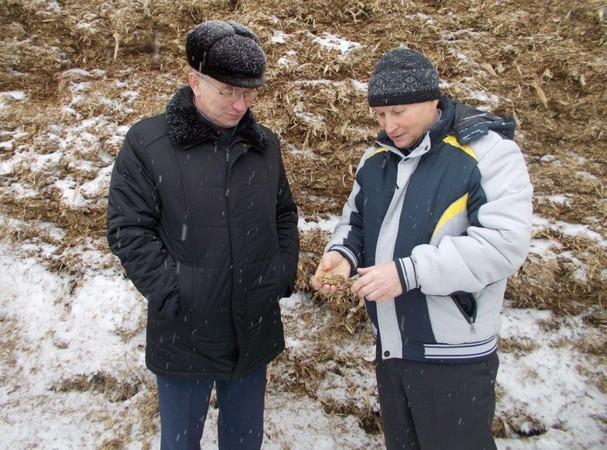 В «Пижанском» заготовлен «гороховый силос»